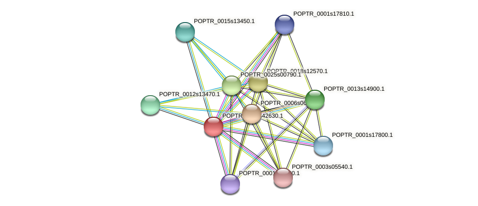 POPTR_0001s42630.1 protein (Populus trichocarpa) - STRING interaction network