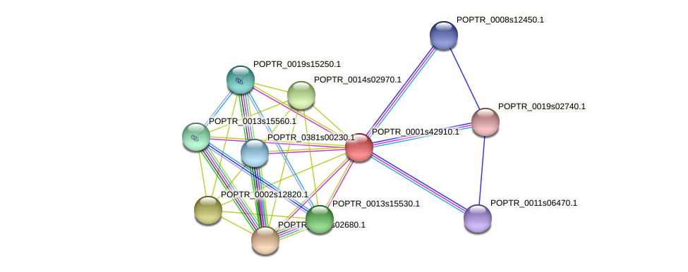POPTR_0001s42910.1 protein (Populus trichocarpa) - STRING interaction network