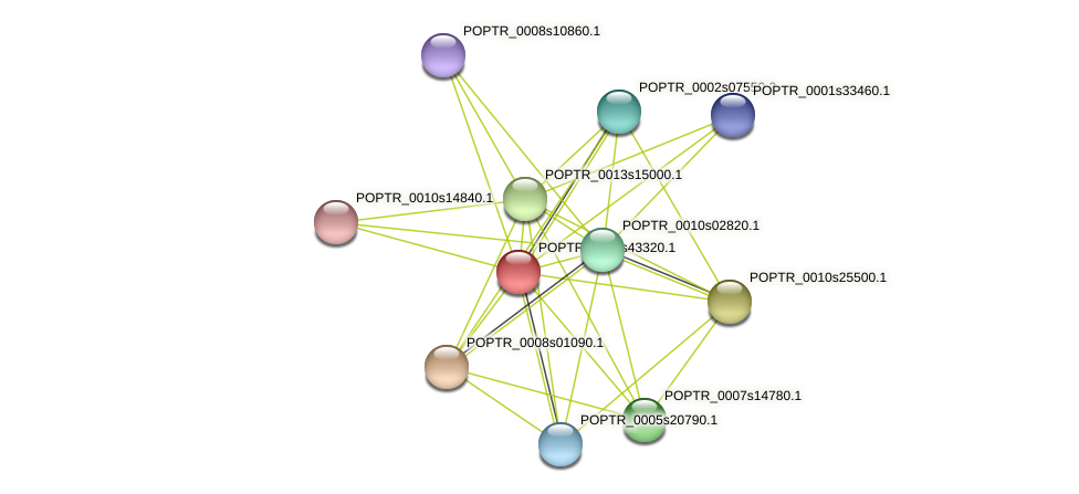 POPTR_0001s43320.1 protein (Populus trichocarpa) - STRING interaction network