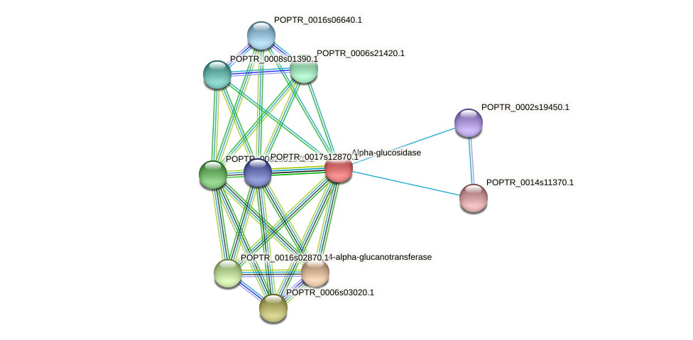 POPTR_0001s43340.1 protein (Populus trichocarpa) - STRING interaction network