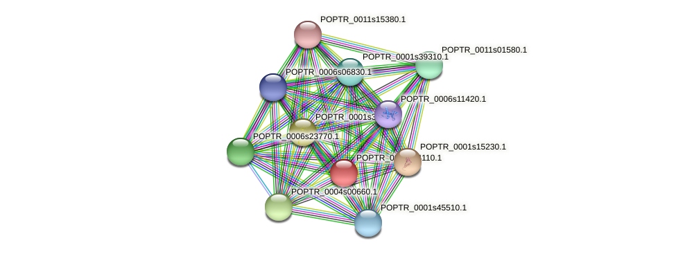 POPTR_0001s44110.1 protein (Populus trichocarpa) - STRING interaction network