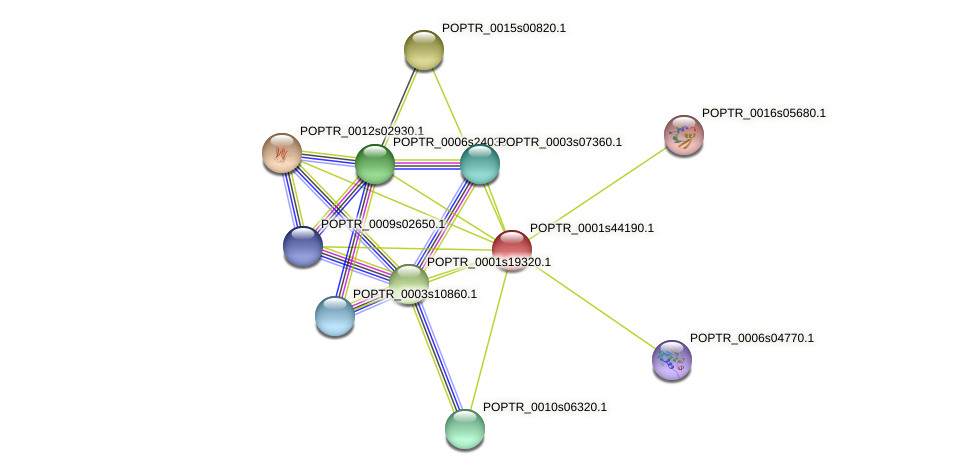 POPTR_0001s44190.1 protein (Populus trichocarpa) - STRING interaction network