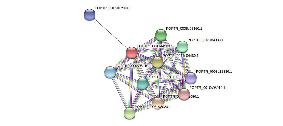 POPTR_0001s44200.1 protein (Populus trichocarpa) - STRING interaction network