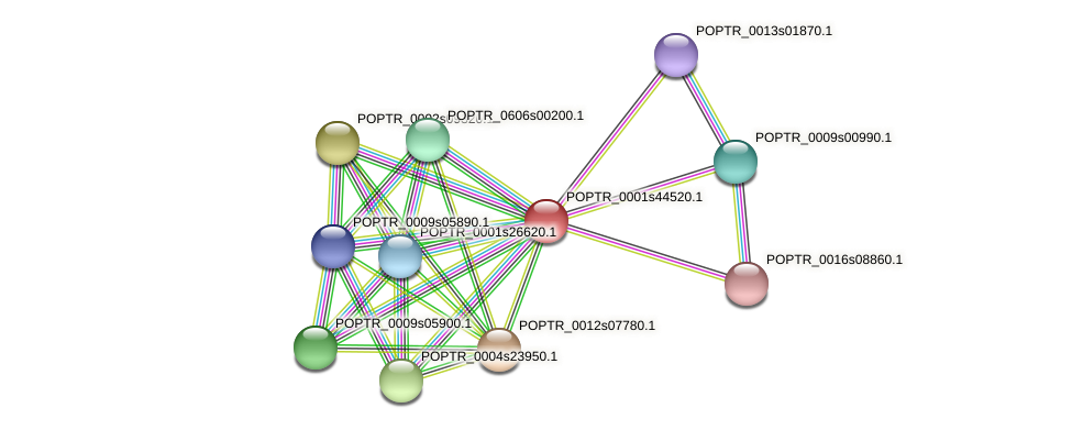POPTR_0001s44520.1 protein (Populus trichocarpa) - STRING interaction network