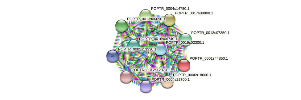 POPTR_0001s44850.1 protein (Populus trichocarpa) - STRING interaction network