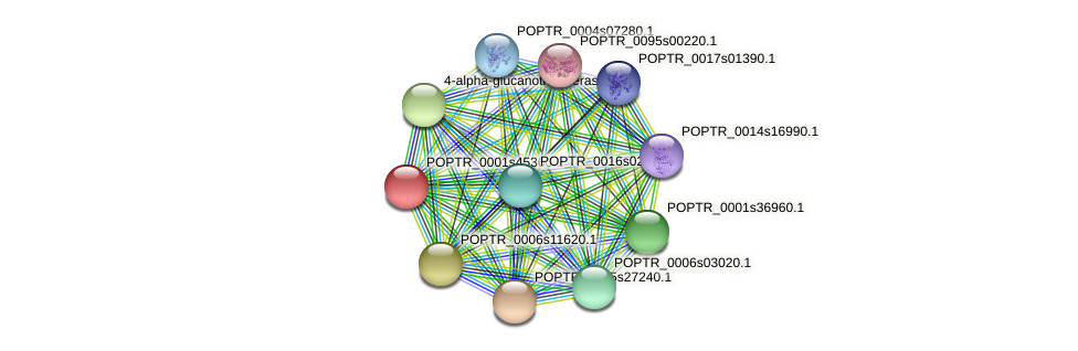 POPTR_0001s45360.1 protein (Populus trichocarpa) - STRING interaction network