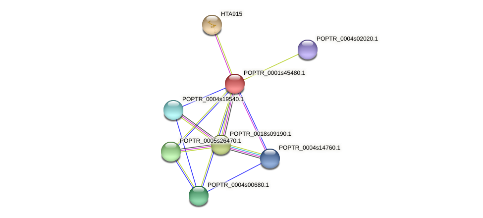 POPTR_0001s45480.1 protein (Populus trichocarpa) - STRING interaction network