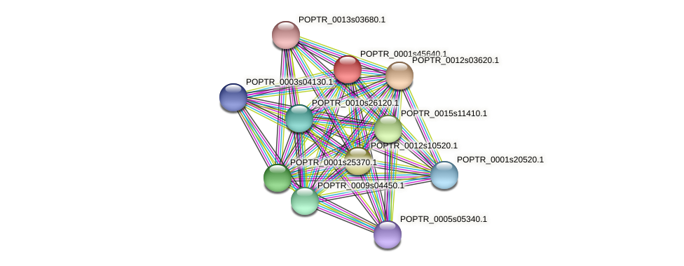 POPTR_0001s45640.1 protein (Populus trichocarpa) - STRING interaction network