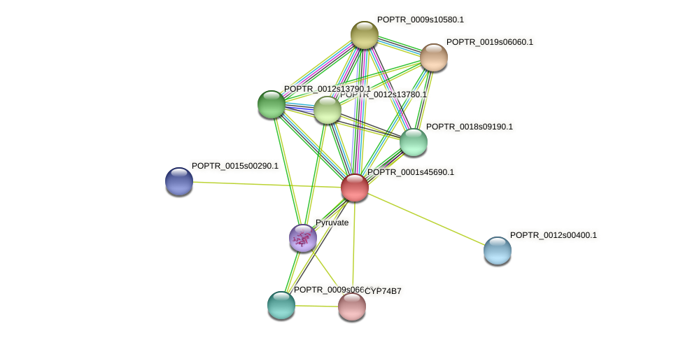 POPTR_0001s45690.1 protein (Populus trichocarpa) - STRING interaction network
