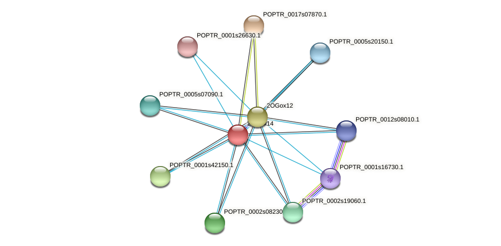 POPTR_0001s45960.1 protein (Populus trichocarpa) - STRING interaction network