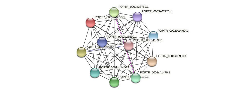 POPTR_0001s46350.1 protein (Populus trichocarpa) - STRING interaction network