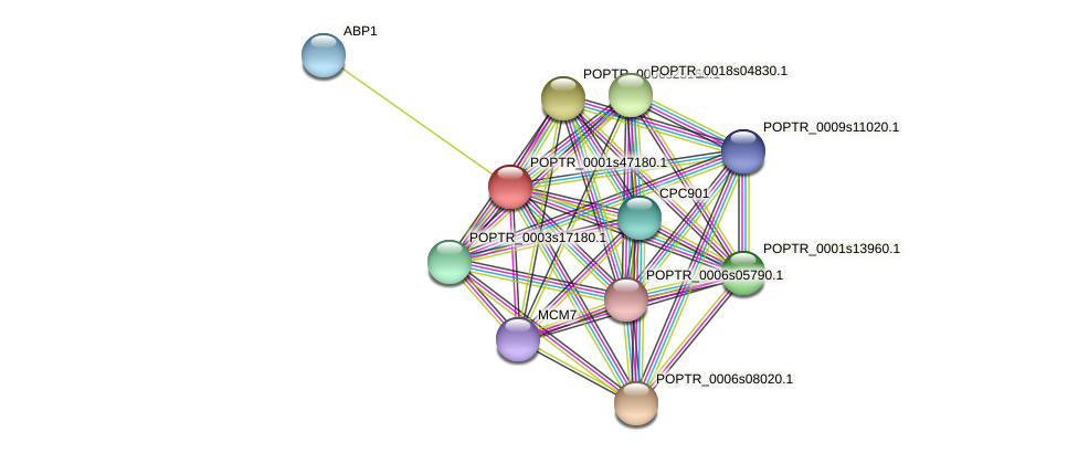 POPTR_0001s47180.1 protein (Populus trichocarpa) - STRING interaction network