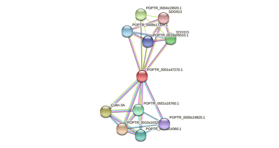 POPTR_0001s47270.1 protein (Populus trichocarpa) - STRING interaction network