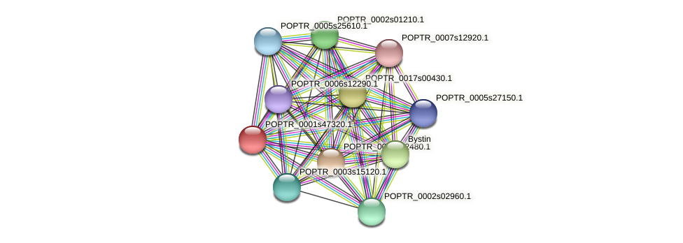 POPTR_0001s47320.1 protein (Populus trichocarpa) - STRING interaction network
