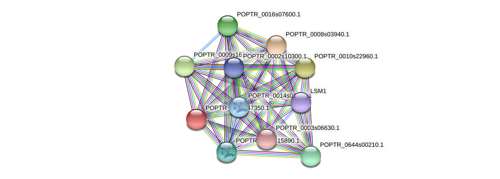 POPTR_0001s47350.1 protein (Populus trichocarpa) - STRING interaction network