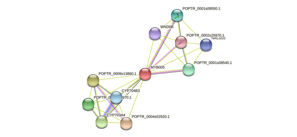 POPTR_0001s47430.1 protein (Populus trichocarpa) - STRING interaction network