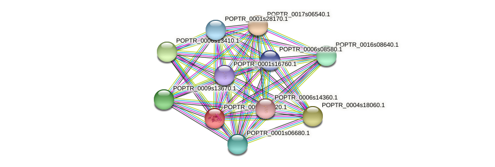 POPTR_0001s47520.1 protein (Populus trichocarpa) - STRING interaction network