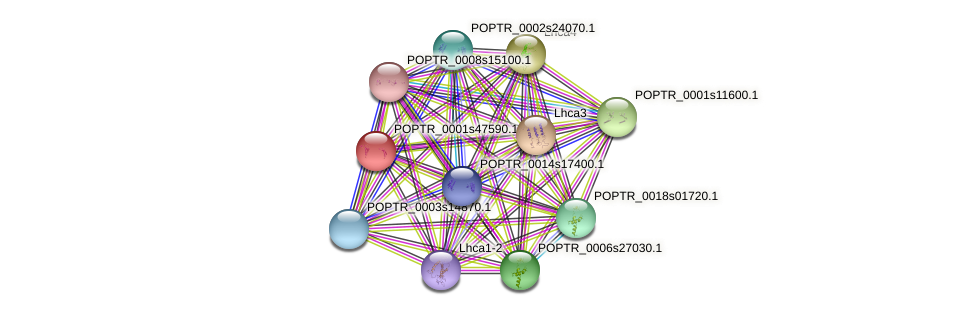 POPTR_0001s47590.1 protein (Populus trichocarpa) - STRING interaction network