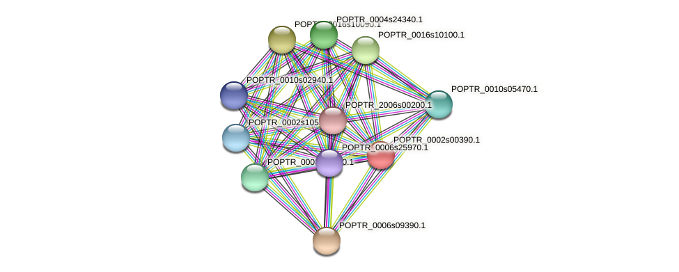 POPTR_0002s00390.1 protein (Populus trichocarpa) - STRING interaction network