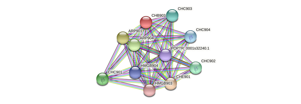 POPTR_0002s00620.1 protein (Populus trichocarpa) - STRING interaction network