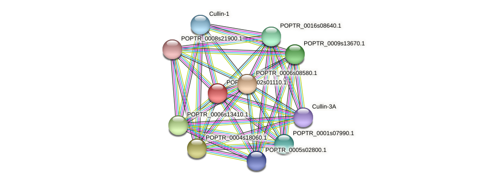 POPTR_0002s01110.1 protein (Populus trichocarpa) - STRING interaction network