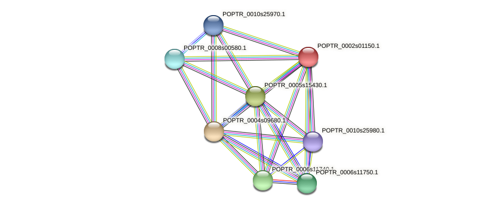 POPTR_0002s01150.1 protein (Populus trichocarpa) - STRING interaction network