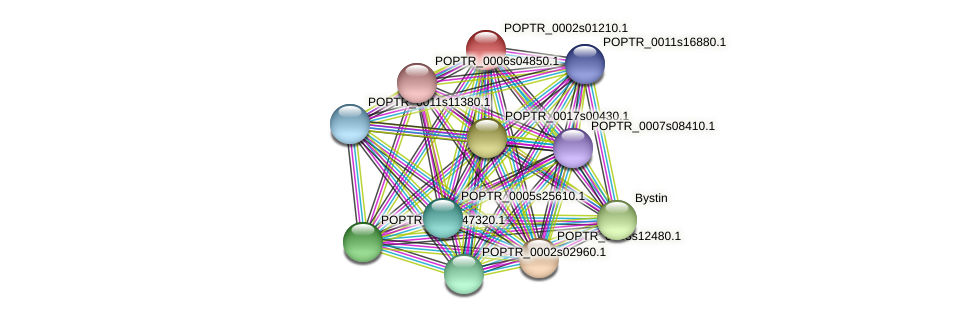POPTR_0002s01210.1 protein (Populus trichocarpa) - STRING interaction network