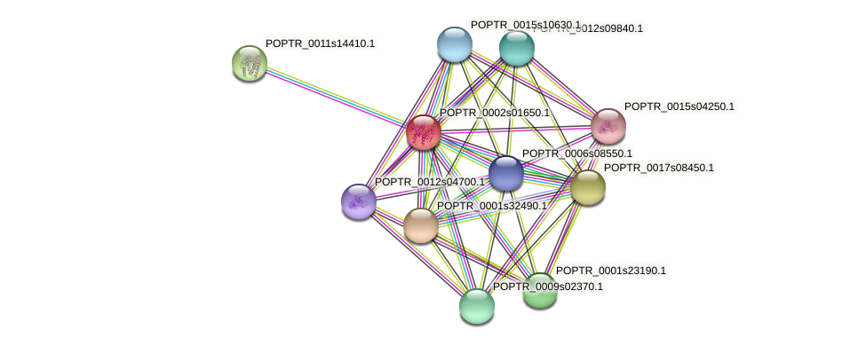 POPTR_0002s01650.1 protein (Populus trichocarpa) - STRING interaction network