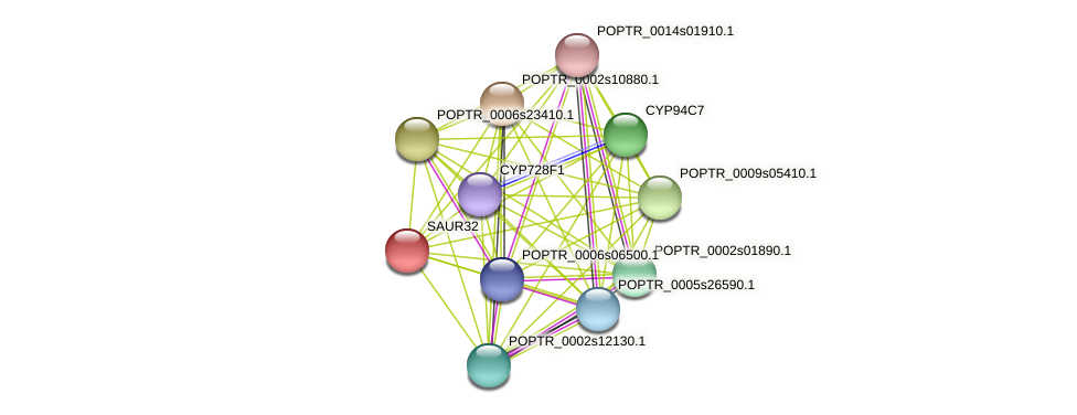 POPTR_0002s02590.1 protein (Populus trichocarpa) - STRING interaction network