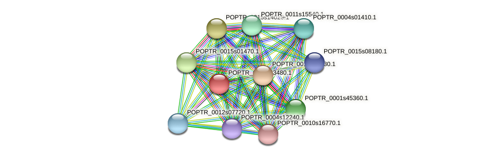 POPTR_0002s03480.1 protein (Populus trichocarpa) - STRING interaction network