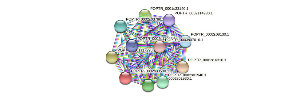 POPTR_0002s03530.1 protein (Populus trichocarpa) - STRING interaction network