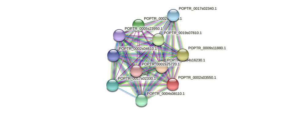 POPTR_0002s03550.1 protein (Populus trichocarpa) - STRING interaction network