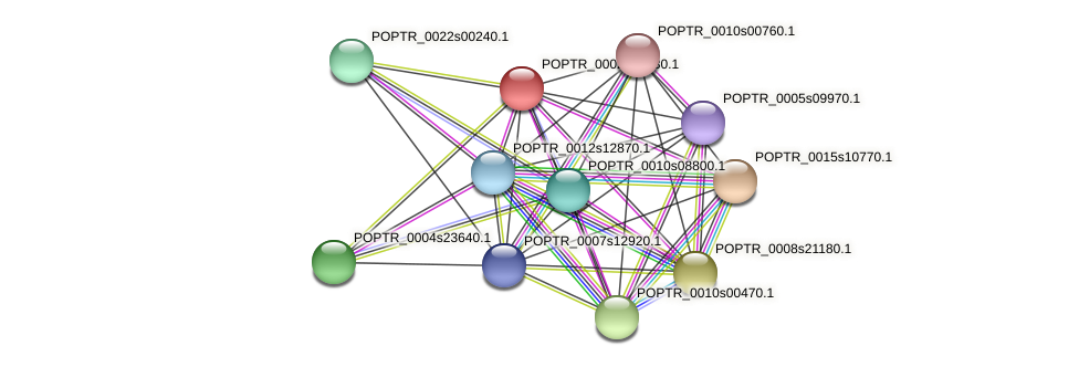 POPTR_0002s03630.1 protein (Populus trichocarpa) - STRING interaction network