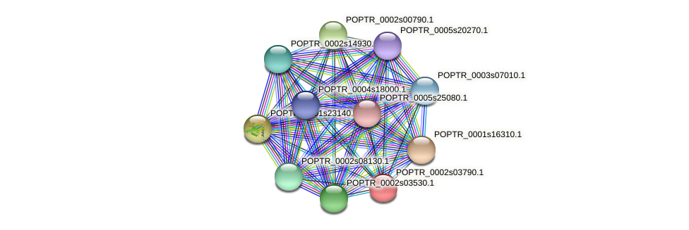 POPTR_0002s03790.1 protein (Populus trichocarpa) - STRING interaction network