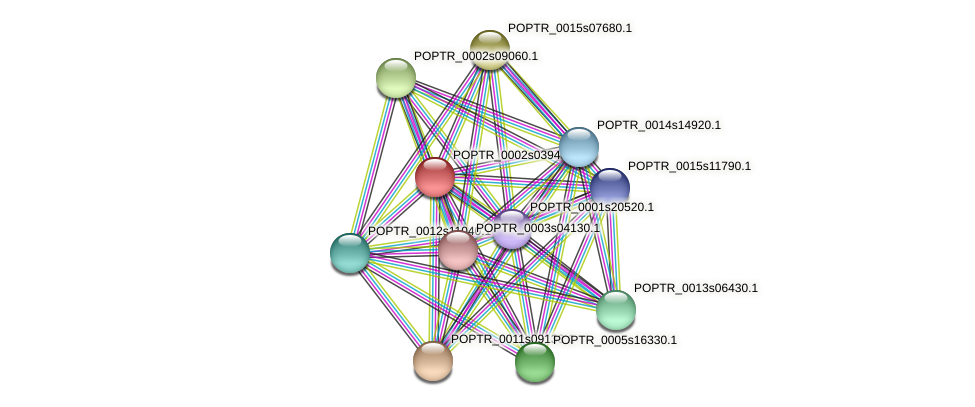 POPTR_0002s03940.1 protein (Populus trichocarpa) - STRING interaction network