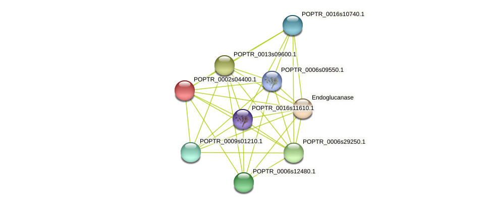 POPTR_0002s04400.1 protein (Populus trichocarpa) - STRING interaction network