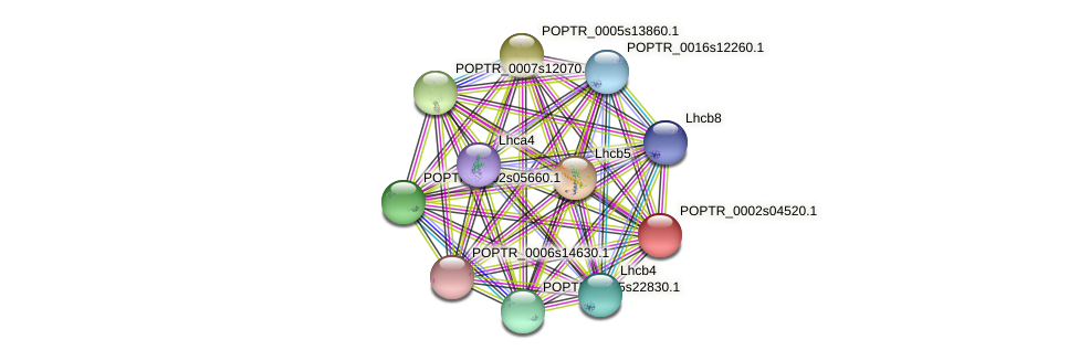 POPTR_0002s04520.1 protein (Populus trichocarpa) - STRING interaction network