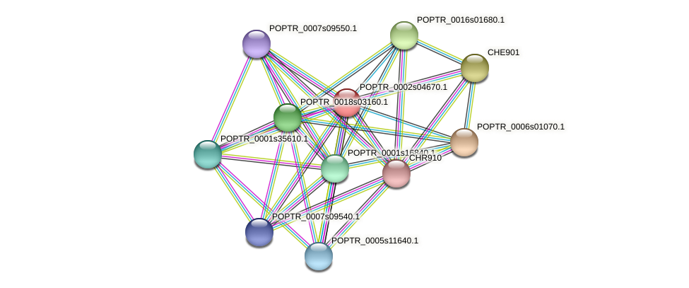 POPTR_0002s04670.1 protein (Populus trichocarpa) - STRING interaction network