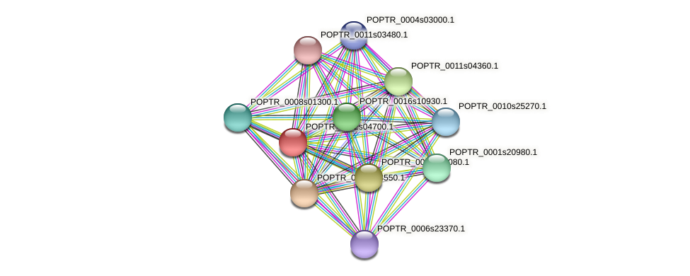 POPTR_0002s04700.1 protein (Populus trichocarpa) - STRING interaction network