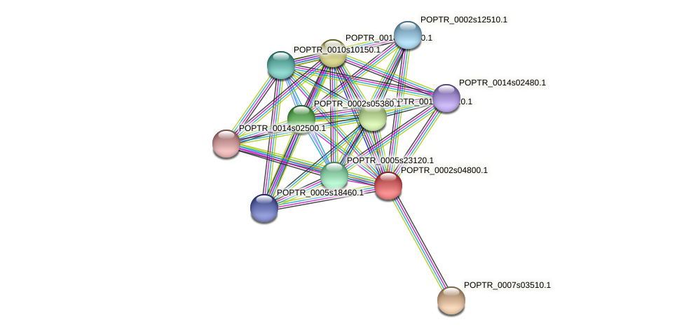 POPTR_0002s04800.1 protein (Populus trichocarpa) - STRING interaction network