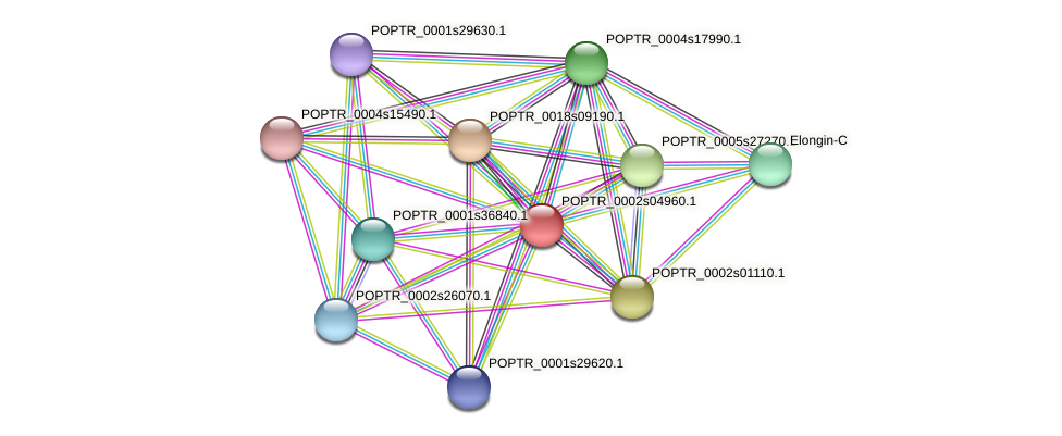 POPTR_0002s04960.1 protein (Populus trichocarpa) - STRING interaction network