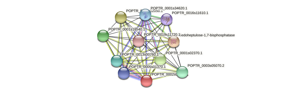 POPTR_0002s05390.1 protein (Populus trichocarpa) - STRING interaction network