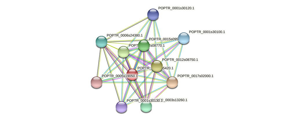 POPTR_0002s05420.1 protein (Populus trichocarpa) - STRING interaction network
