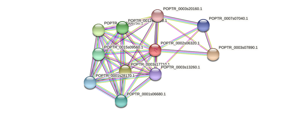 POPTR_0002s06320.1 protein (Populus trichocarpa) - STRING interaction network