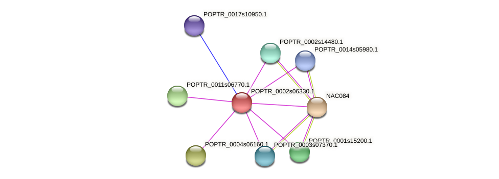 POPTR_0002s06330.1 protein (Populus trichocarpa) - STRING interaction network