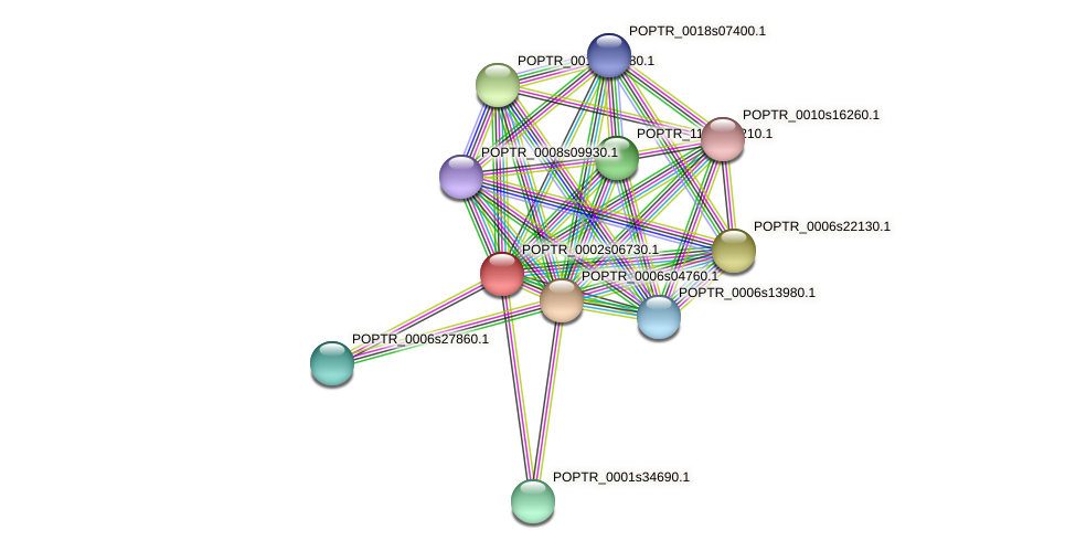 POPTR_0002s06730.1 protein (Populus trichocarpa) - STRING interaction network