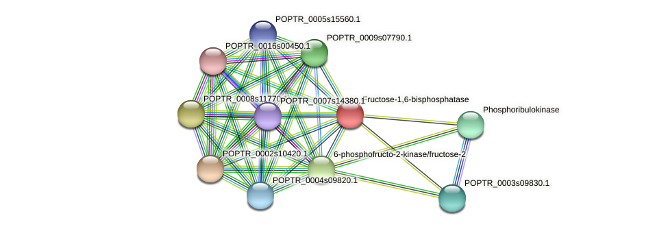 POPTR_0002s06960.1 protein (Populus trichocarpa) - STRING interaction network