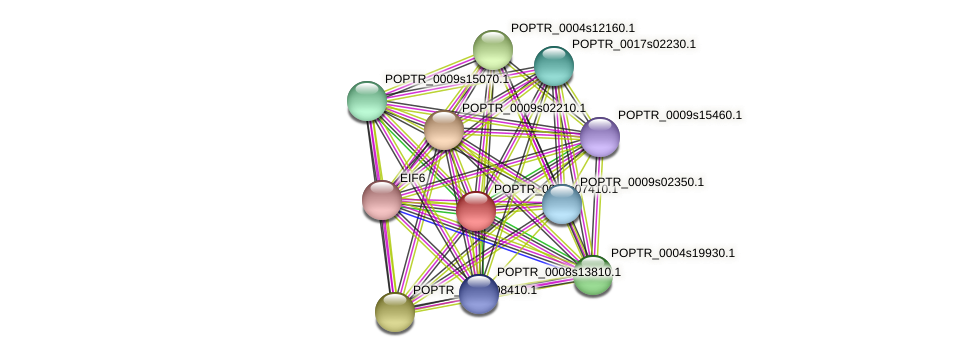 POPTR_0002s07410.1 protein (Populus trichocarpa) - STRING interaction network