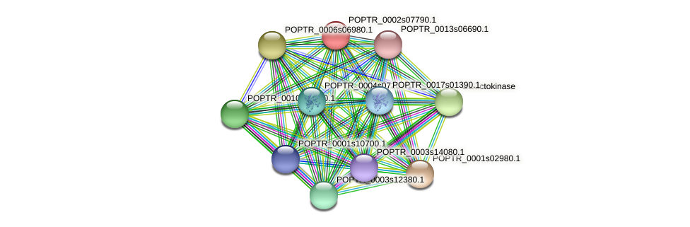 POPTR_0002s07790.1 protein (Populus trichocarpa) - STRING interaction network