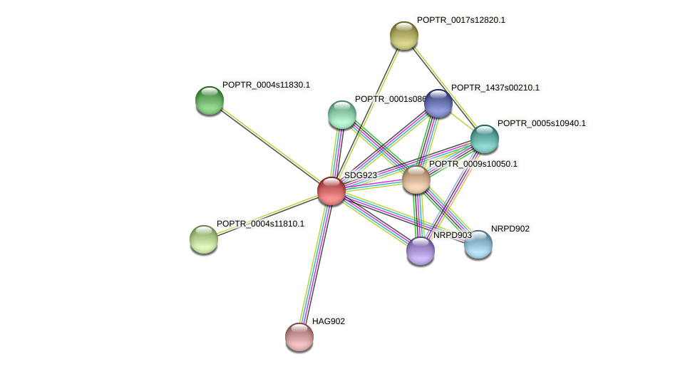 POPTR_0002s07930.1 protein (Populus trichocarpa) - STRING interaction network